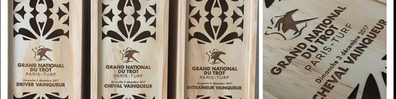 Concours Grand National du Trot  » Paris-Turf  » 2017